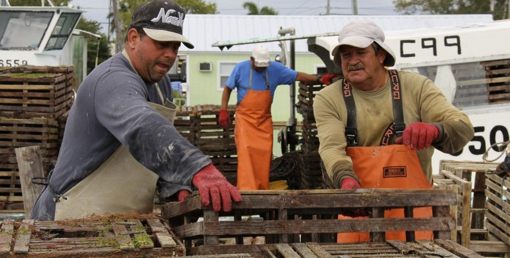 Seafood 15th street marina marathon at boot key harbor for Commercial fishing boots